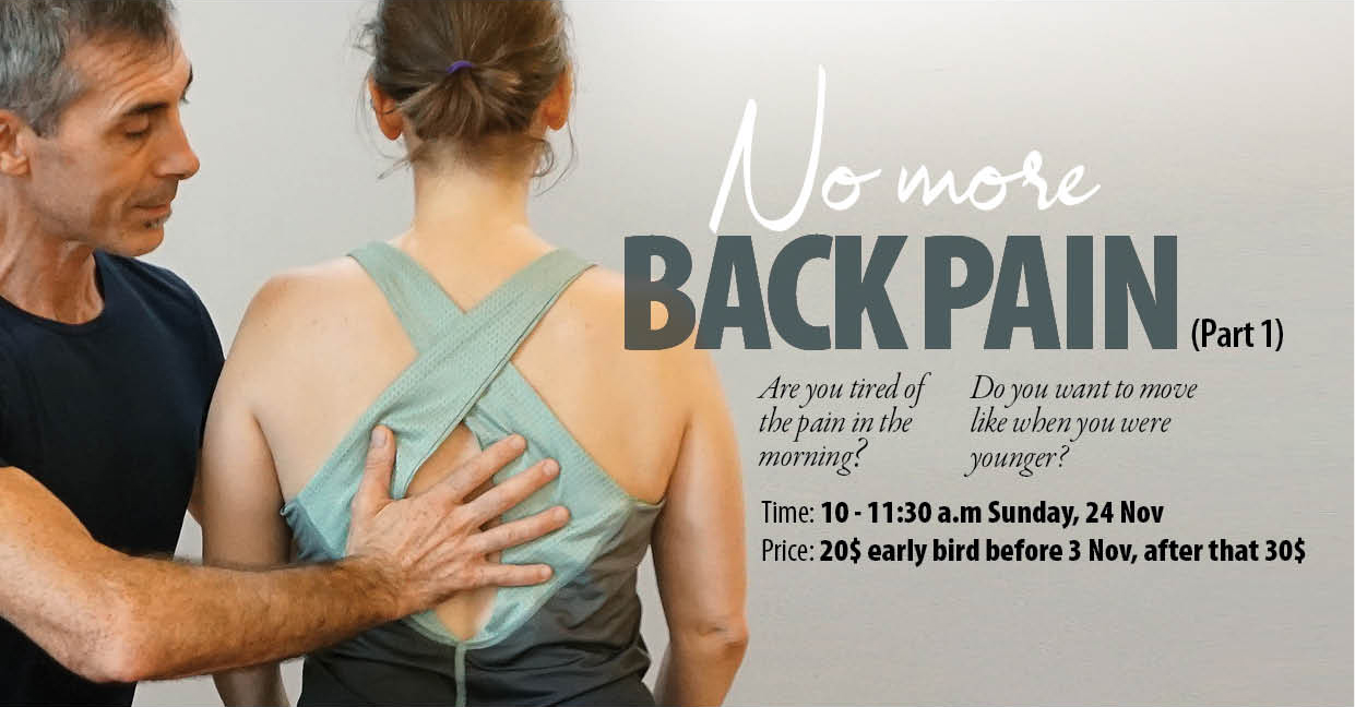 No More Back Pain Workshop (Part 1)